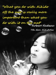 What you do with aikido